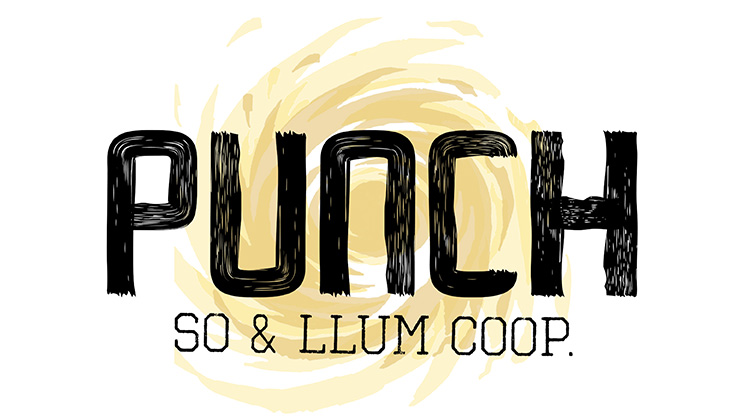 logo punch 5web